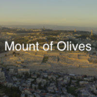 Mount of Olives front.jpg