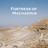Machaerus front.jpg